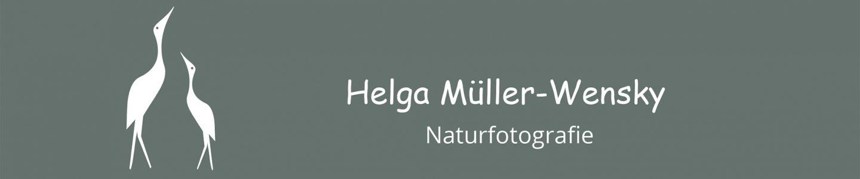 Mueller-Wensky-Naturfotos